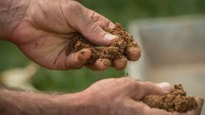 Improving clay soil